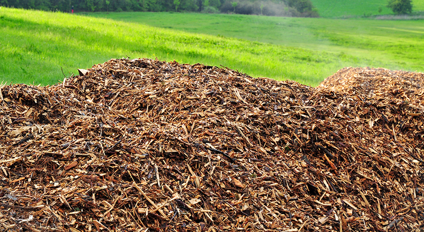 Where Does My Food Come From Series: Types of Organic Mulch