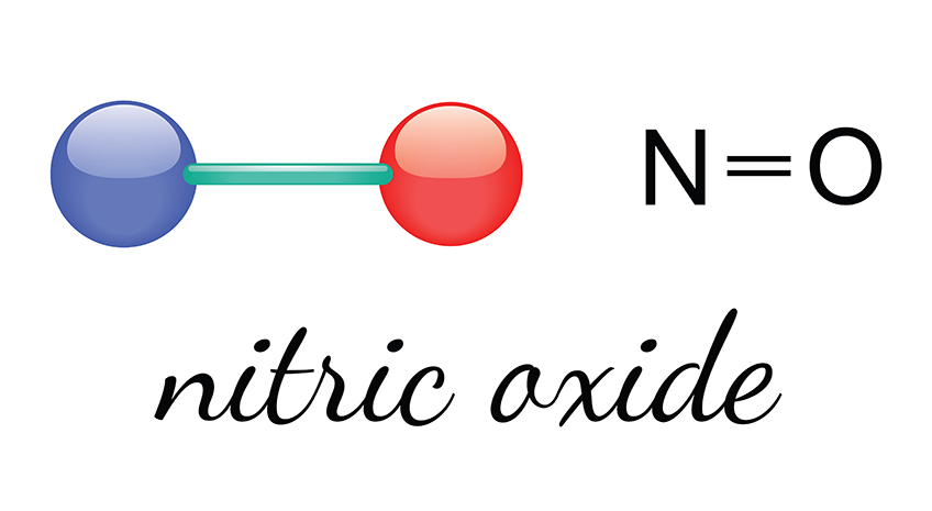 Why Noni is so Special - Nitric Oxide