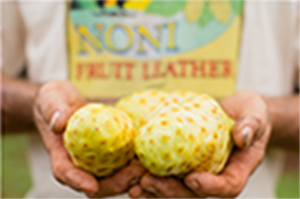 Raw Pulp over Processed Juice: Don't Be Deceived by the False Promises of Noni Juice